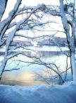 深三雪山進出(2000年度卒)