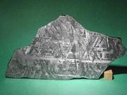 隕石収集家。