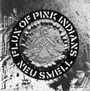 FLUX OF PINK INDIANS