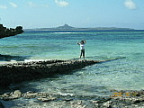 沖縄旅行を考えてませんか?