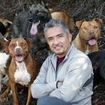 Dog Whisperer・Cesar Millan