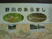 野川公園と野川流域