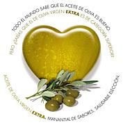 スペイン・オリーブオイル