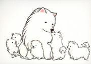 ペットの保育園Will
