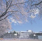 2010年度卒国立高校
