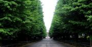慶應経済07年度入学者コミュ