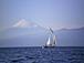 ヨットに乗ろう・伊豆の海・沼津