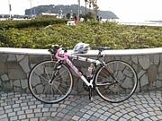 湘南サイクリングロード