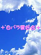 +゜白バラ愛好会゜+