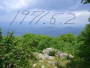 1971年6月2日生まれの方