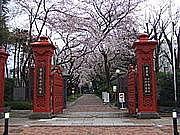 2012年 学習院女子大学 入学