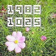 1982年10月25日生まれ