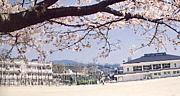 広島市立二葉中学校 同窓会