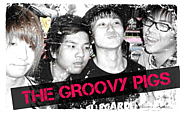 the groovy pigs