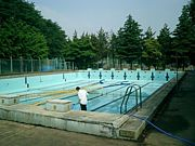 進め!!県柏水泳部!!