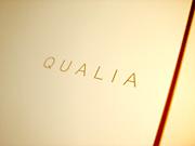 Sony QUALIA