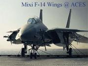 TOPGUN of ACES/F-14飛行隊