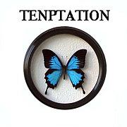 ☆TENPTATION☆