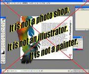 It is not photo shop!