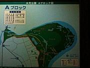 水元公園走ろう会