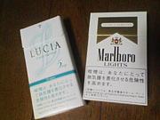 LUCIA × Marlboro