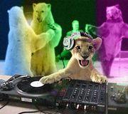 DJの指先がヤ・バ・イ♪