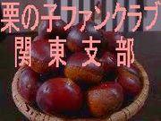 栗林みな実FC@関東支部