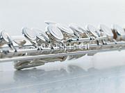 flute,fluter,flutist!