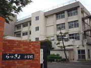 鳥取県立らっきょ小学校