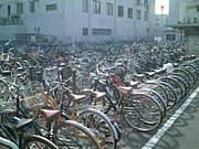 駐輪場の自転車とめた場所忘れる