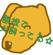 島根で犬飼ってる☆