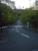 関西大学総合情報学部自転車通学