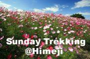 SundayTrekking♡Himeji