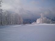 阿仁スキー場で滑る!