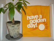 have a golden day!