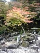 西日本豪雨:食べて応援:広島県