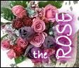{ The Rose }