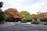 東京大学の学生の彼氏・彼女
