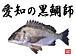 愛知の黒鯛師