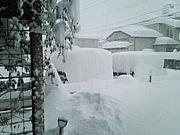 雪国でガーデニング&家庭菜園