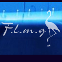 Flamingo the Arusha