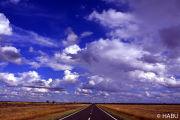 空へと続く道。