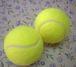 横浜国立大学テニスサークル連盟