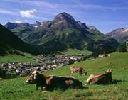 チロル - Tirol