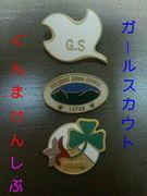 *I  like  Girl  Scout* @gunma