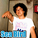Sea Bird シーバード