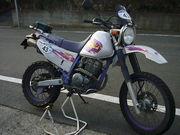 TT250R /RAIDオーナーズ