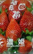 苺は「濃姫」