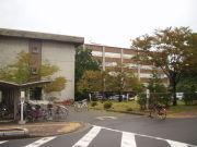 新潟大学法学部
