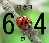 虫(6.4)記念日